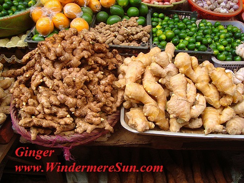 Ginger-great anti-inflammatory agent