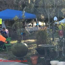 12th Annual Windermere Treebute (credit: Windermere Sun-Susan Sun Nunamaker)