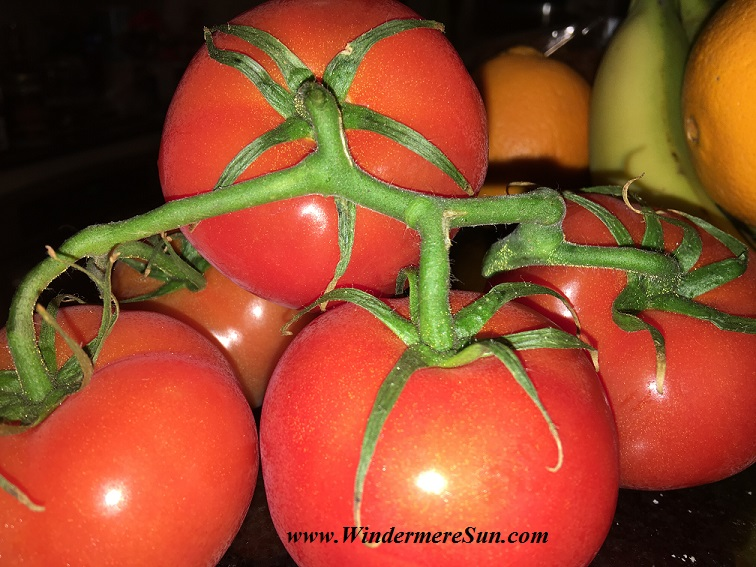 Fresh tomatoes from Farmer's Market (credit: Windermere Sun-Susan Sun Nunamaker)