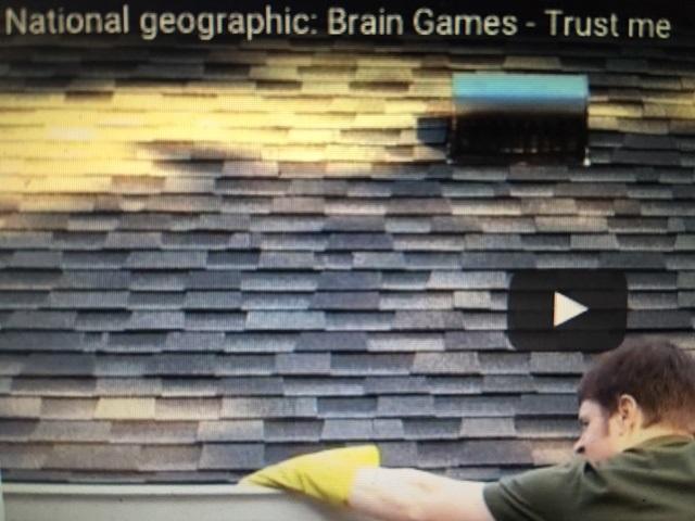 Brain Games-Trust