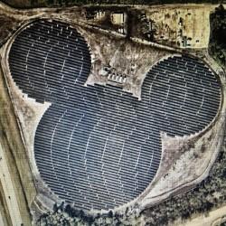 Disney Solar Farm at the Reedy Creek Improvement District
