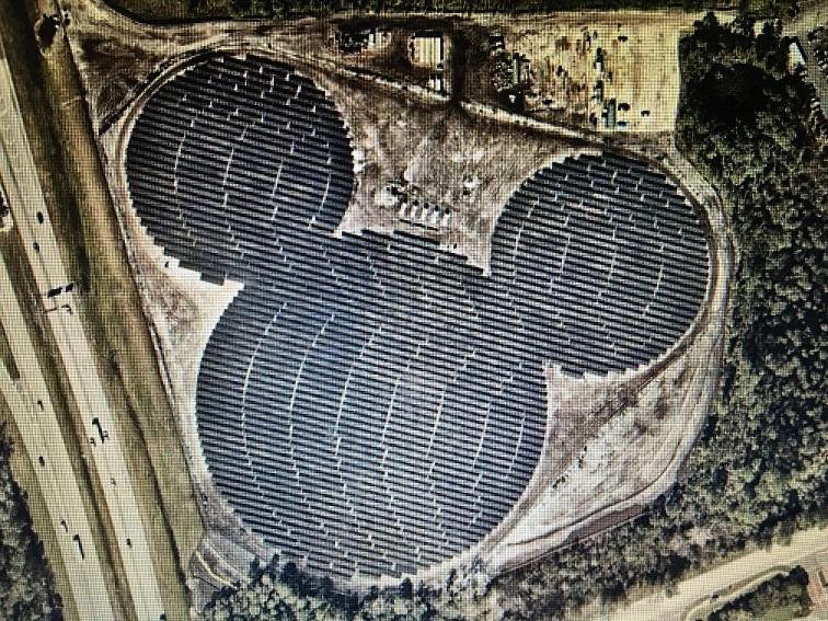 Disney Solar Farm final
