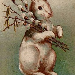 Easter-Easter_Bunny_Postcard_1907