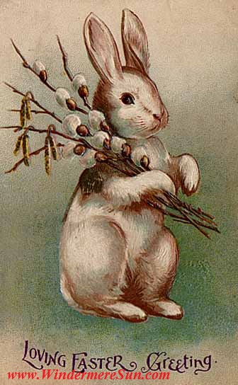 Easter-Easter_Bunny_Postcard_1907 Pub Do final