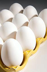 Eggs-pasteurizedi