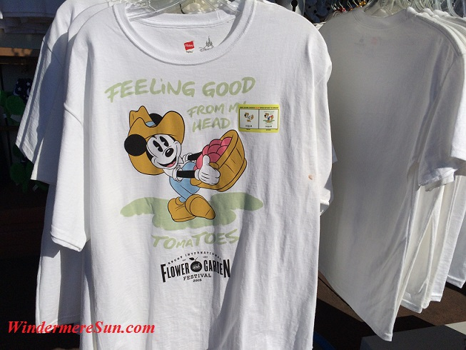 Epcot-Feeling Good T-Shirt flower & garden show final