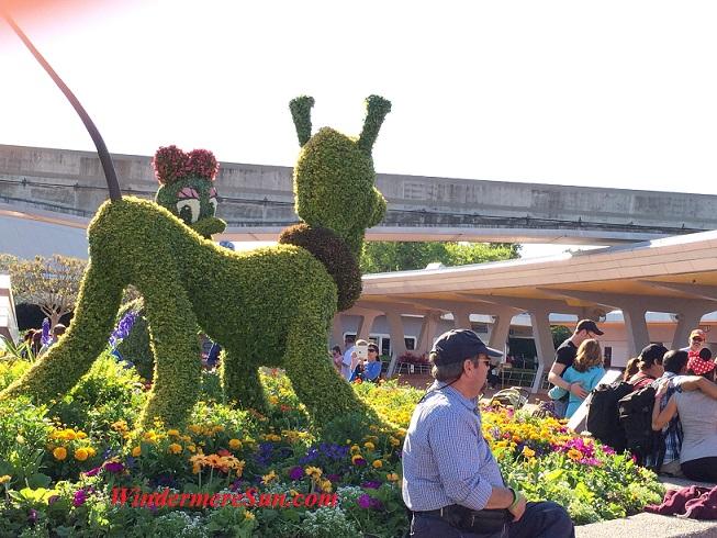Epcot-Topiary Pluto final
