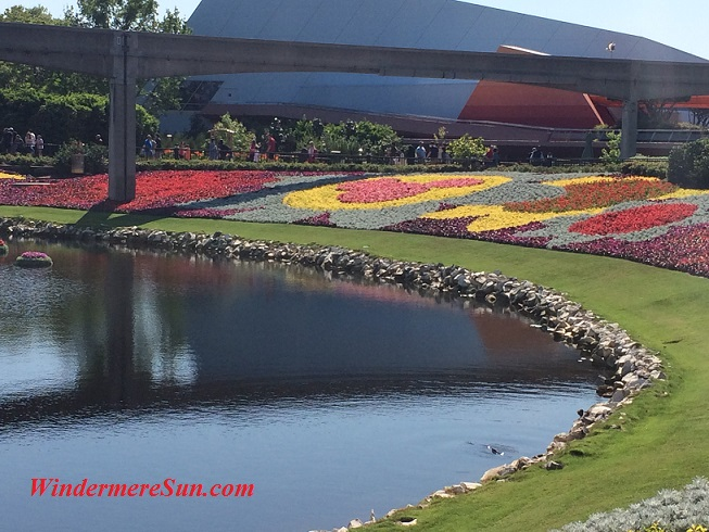 Epcot-flowers by lake (credit: Windermere Sun-Susan Sun Nunamaker)
