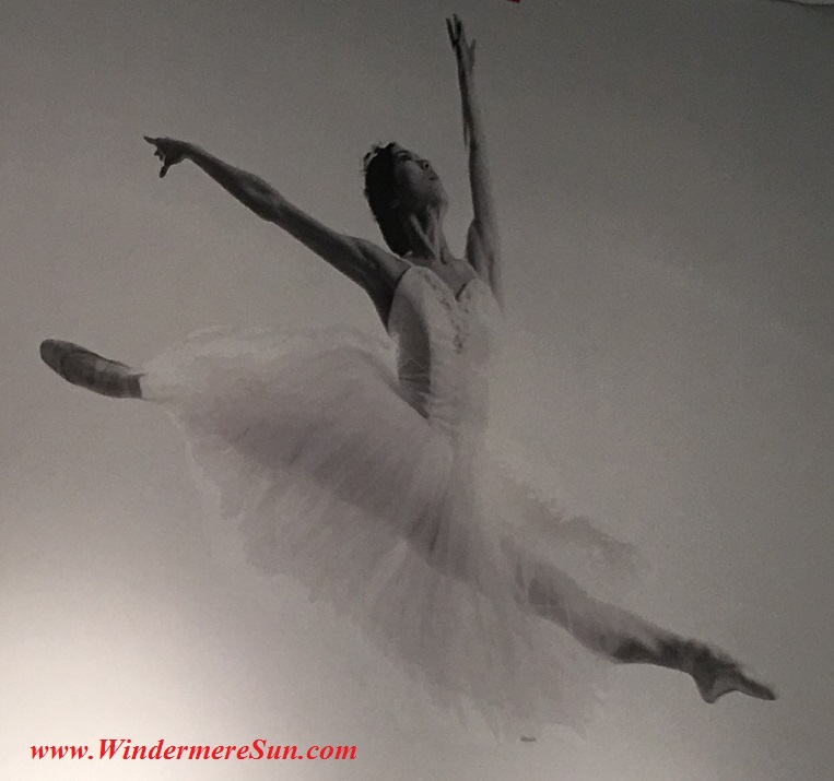 Orlando Ballet School South Campussingle ballet dancer poster2 at 7988 Via Dellagio Way, Suite 204., Orlando, FL final
