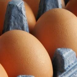 Pastured eggs (credit: farmfreshdirect2u.com)
