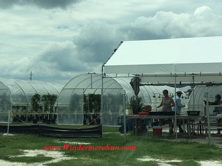 Bekemeyer Hydroponic Farm41 final