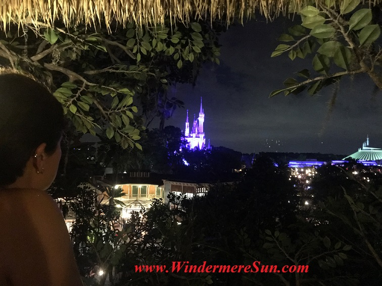 Viewing Cinderella Castle at night from Robinson Cruiso Tree house. Many people got the same idea: Beautiful sunny day to visit Magic Kingdom (credit: Windermere Sun-Susan Sun Nunamaker)