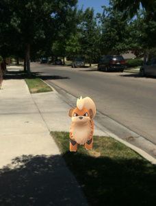 characters in new sensation: Pokemon Go (credit: Marina Nunamaker)