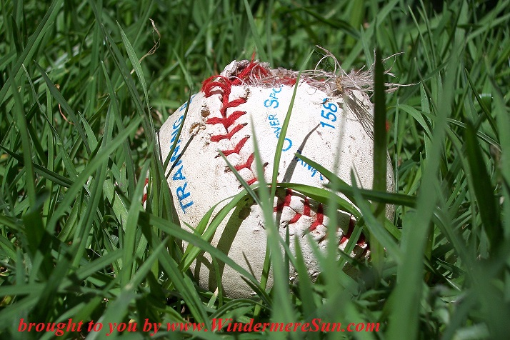 baseball-in-the-grass-1259280, freeimages, credit-Dennis Poulette final