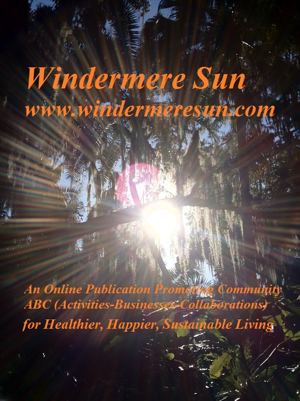 windermere-sun-concentric-sunbeams-vistaprint-card8