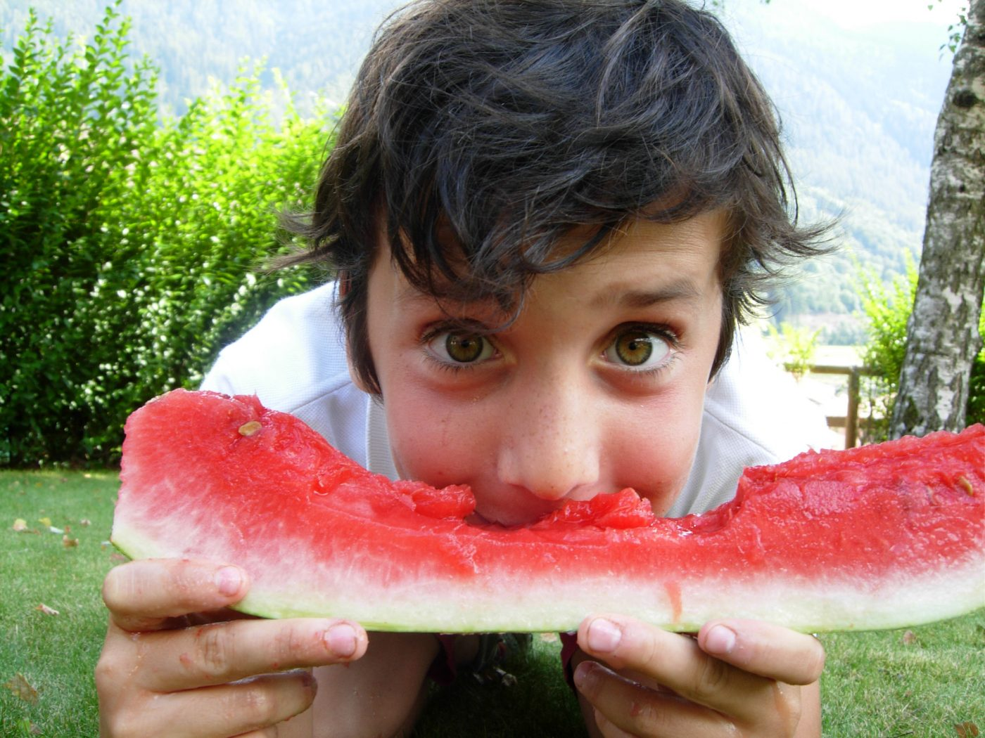 watermelon-diving-in-a-watermelon-1320508-freeimages-by-valentina-salvadei