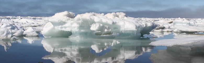 """New Normal"" of Sea Ice (credit: NASA)"