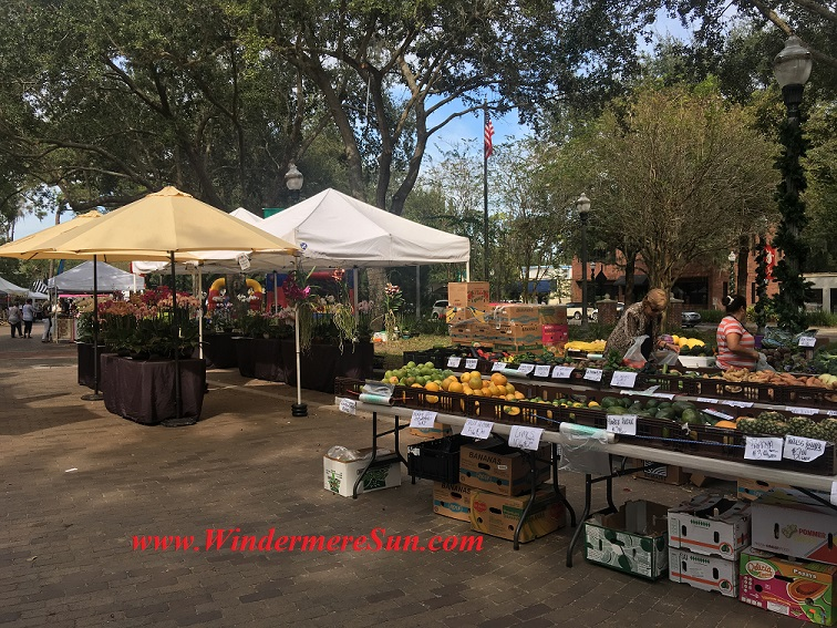windermere-farmers-market8-produce-final
