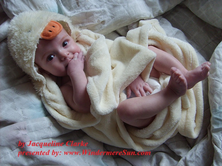 baby-1434491, freimages, by Jacqueline Clarke final