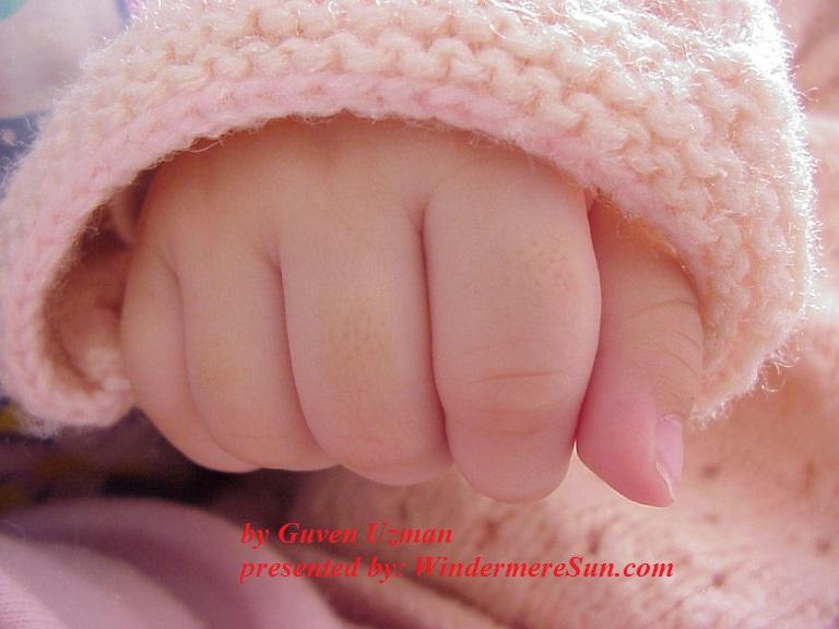 baby-hand-1-1316351, freeimages, by Guven Uzman final