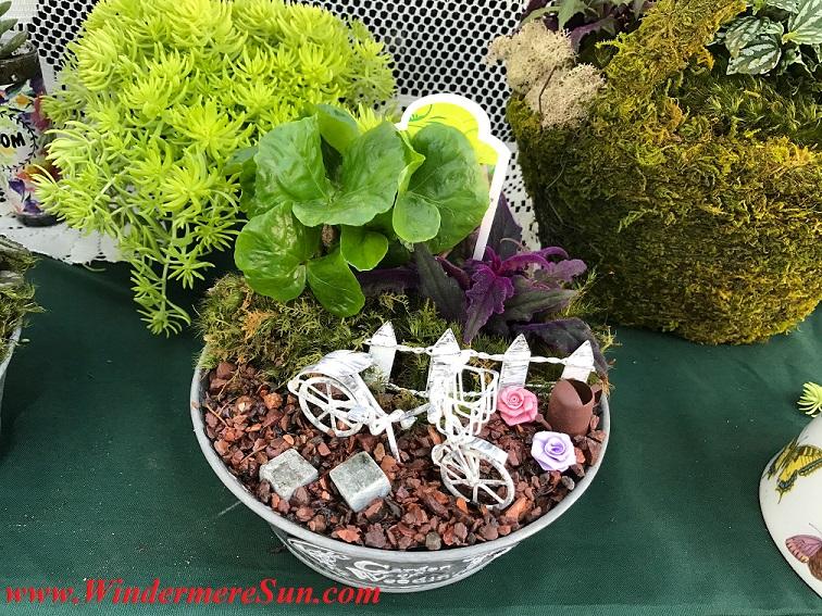 Bike in planter final