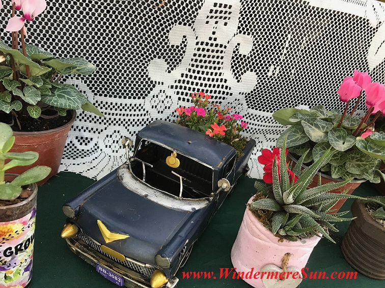 flowers in truck planter final