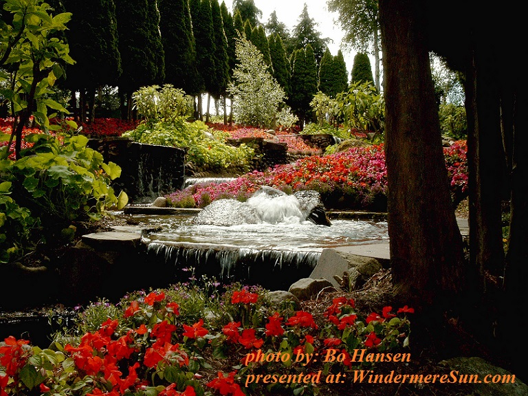flower-power-landscape-1457578, by Bo Hansen final