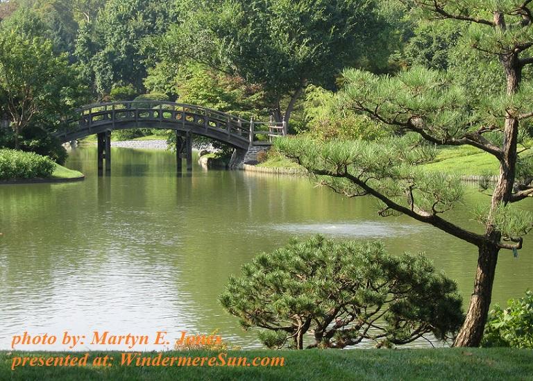 japanese-garden-1622097, by Martyn E. Jones final