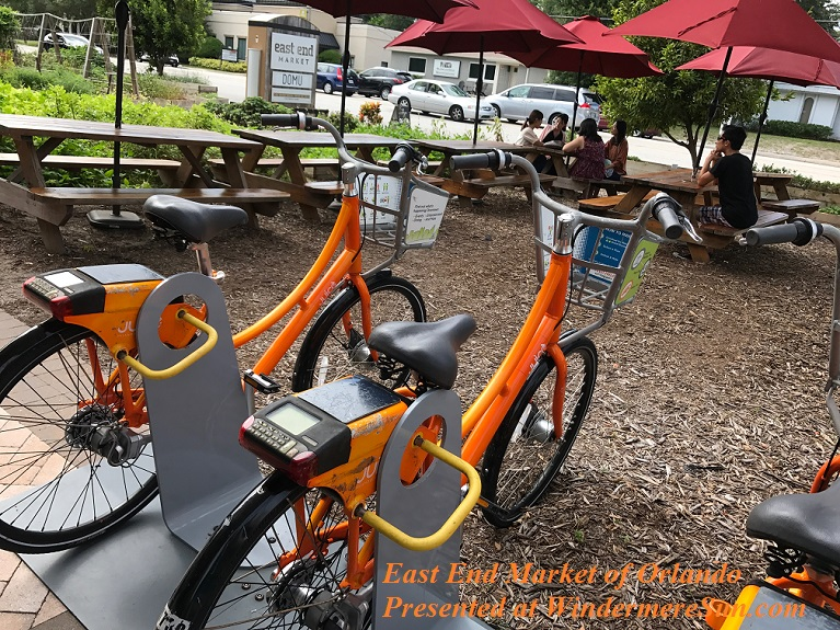 City Bikes and market garden final