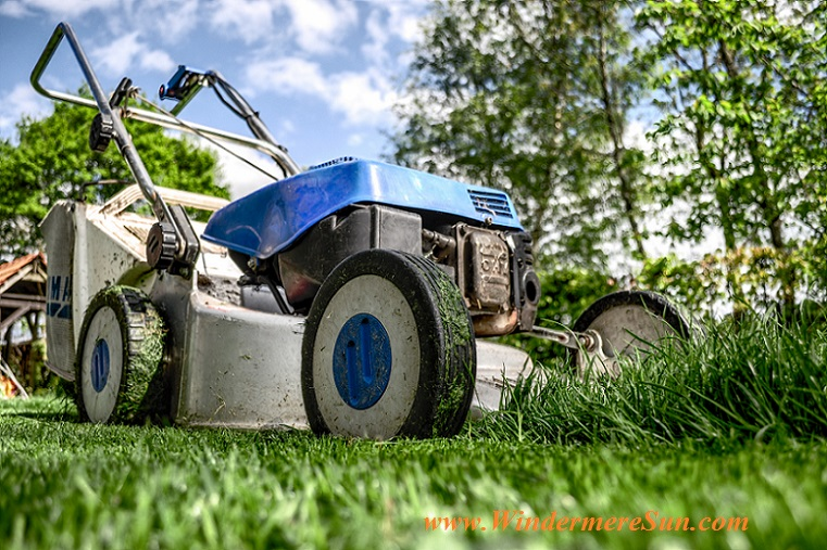lawn mower-garden-grass-meadow-green final