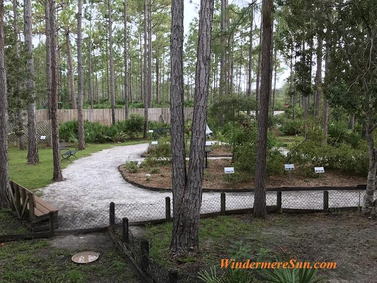 Butterfly garden2 final