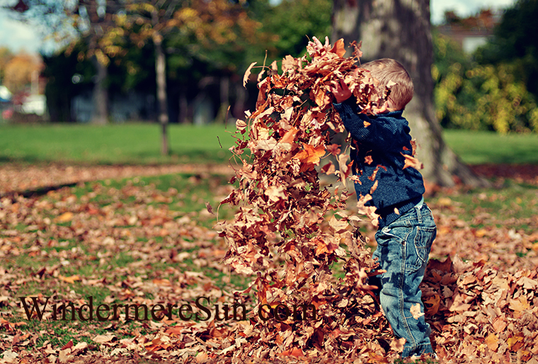 fall festival-boy with leaves-pexels-photo final