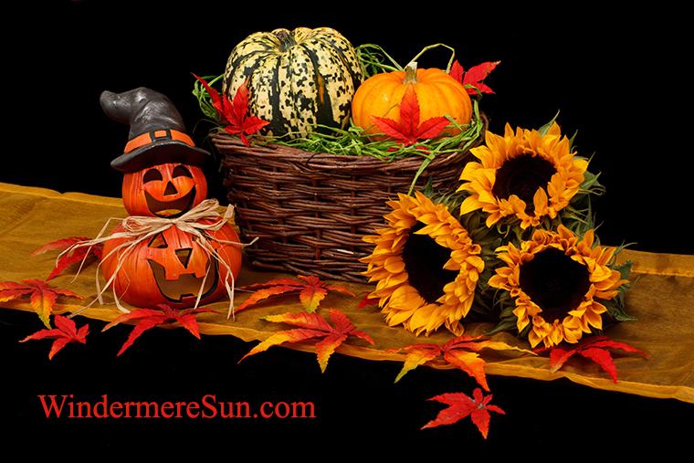 fall festival--pumpkins and sunflowers-autumn-black-dark-decoration-41200 final