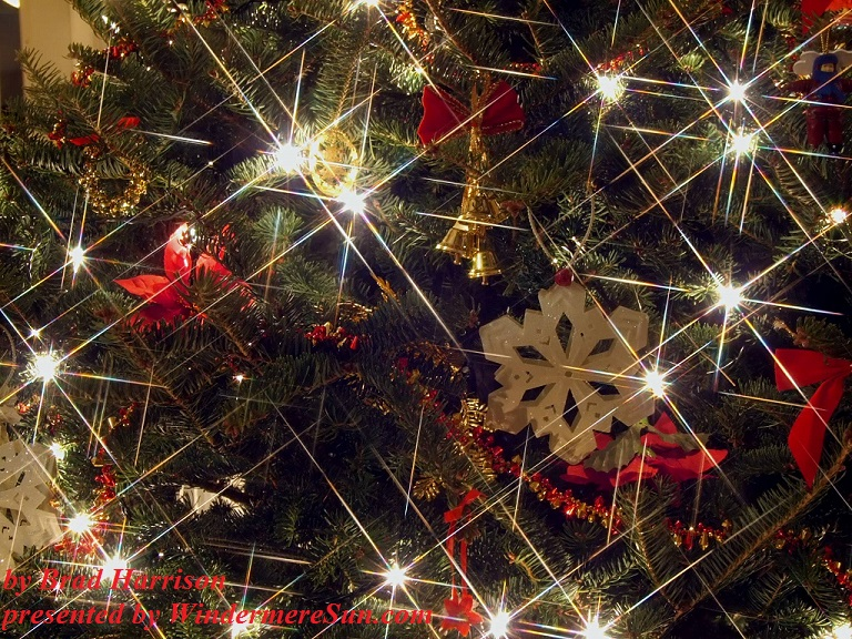 definitely-sparkly-1170343, freeimages, by Brad Harrison final