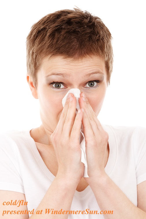 allergy-cold-disease-flu-41284 final