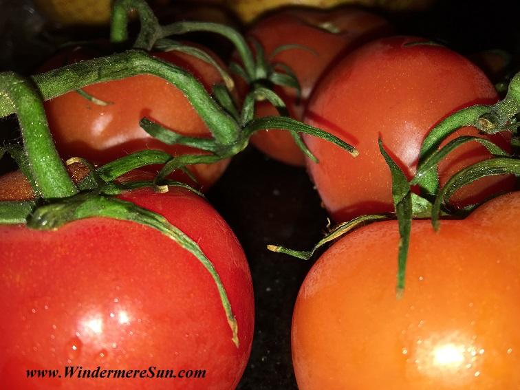 Farmer's Market-tomatoes2 final