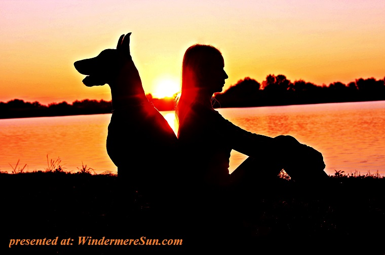 dog and owner meditation-pexels-photo-531089 final