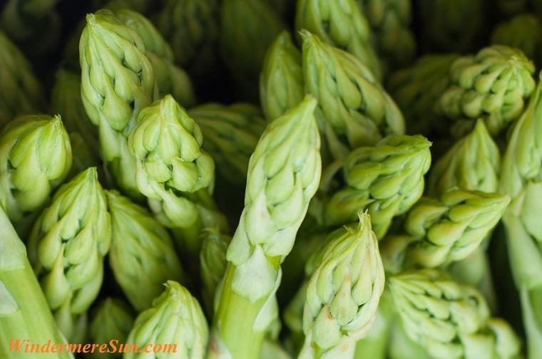 asparagus tips, pexels-photo-42165 final