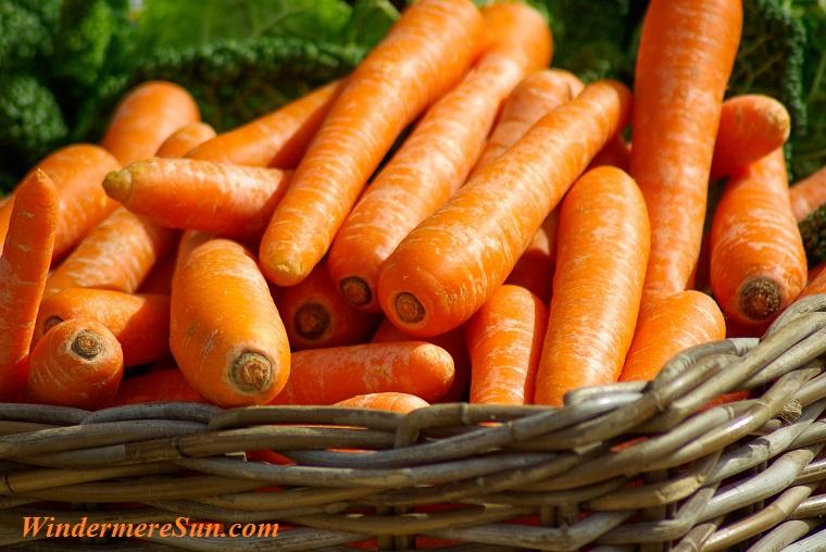 basket of carrots, carrots-basket-vegetables-market-37641 final