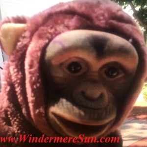 Bonnie's Puppet Palace-Bonnie's Monkey (credit: Windermere Sun-Susan Sun Nunamaker)