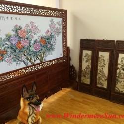 Screen-Chinese Jingdezhen Fine Ceramics Exhibition Center near First Oriental Supermarket in Orlando, FL- (Attrib: Windermere Sun-Susan Sun Nunamaker)