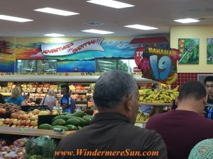 Trader Joe's-adventure in shopping (credit: Windermere Sun-Susan Sun Nunamaker)