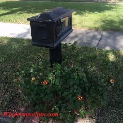 Mailbox Painting Service Needed2 (credit: Windermere Sun-Susan Sun Nunamaker)