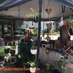 Windermere Farmer's Market-Hidden Cypress Hollow3 final