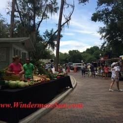 Windermere Farmer's Market-fruit vege stand final