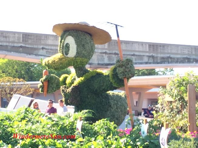 Epcot topiary Donald (credit: Windermere Sun-Susan Sun Nunamaker)
