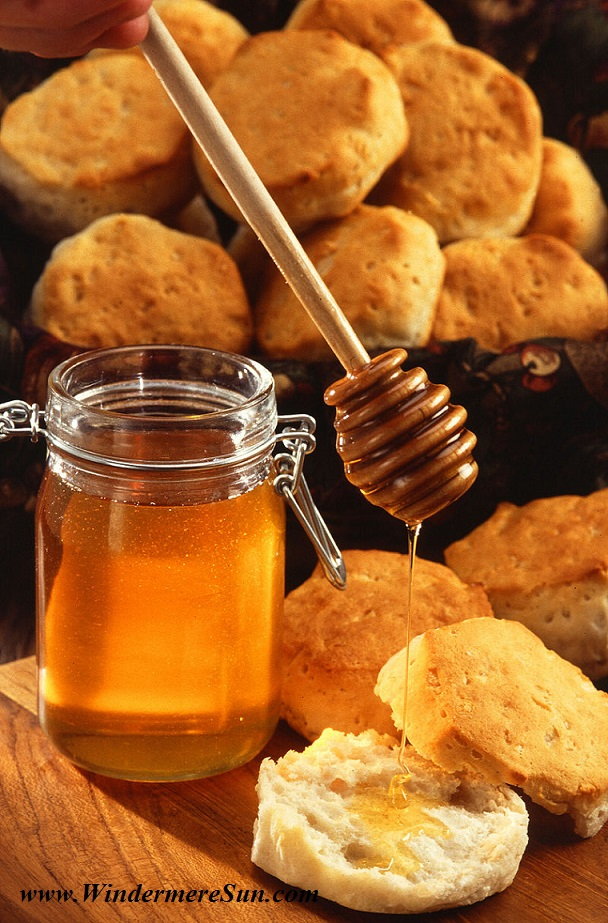 A Jar of Honey , Honey dipper and American biscuit