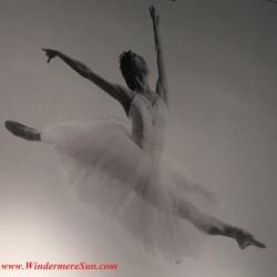Orlando Ballet School South Campus single ballet dancer poster2 at 7988 Via Dellagio Way, Suite 204., Orlando, FL