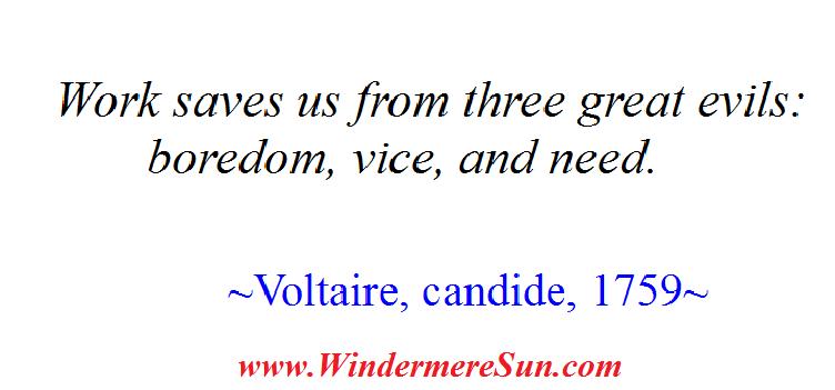 Voltaire on Work (credit; Windermere Sun-Susan Sun Nunamaker)