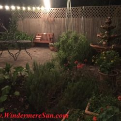 K Restaurant-backyard garden (credit: Windermere Sun-Susan Sun Nunamaker)